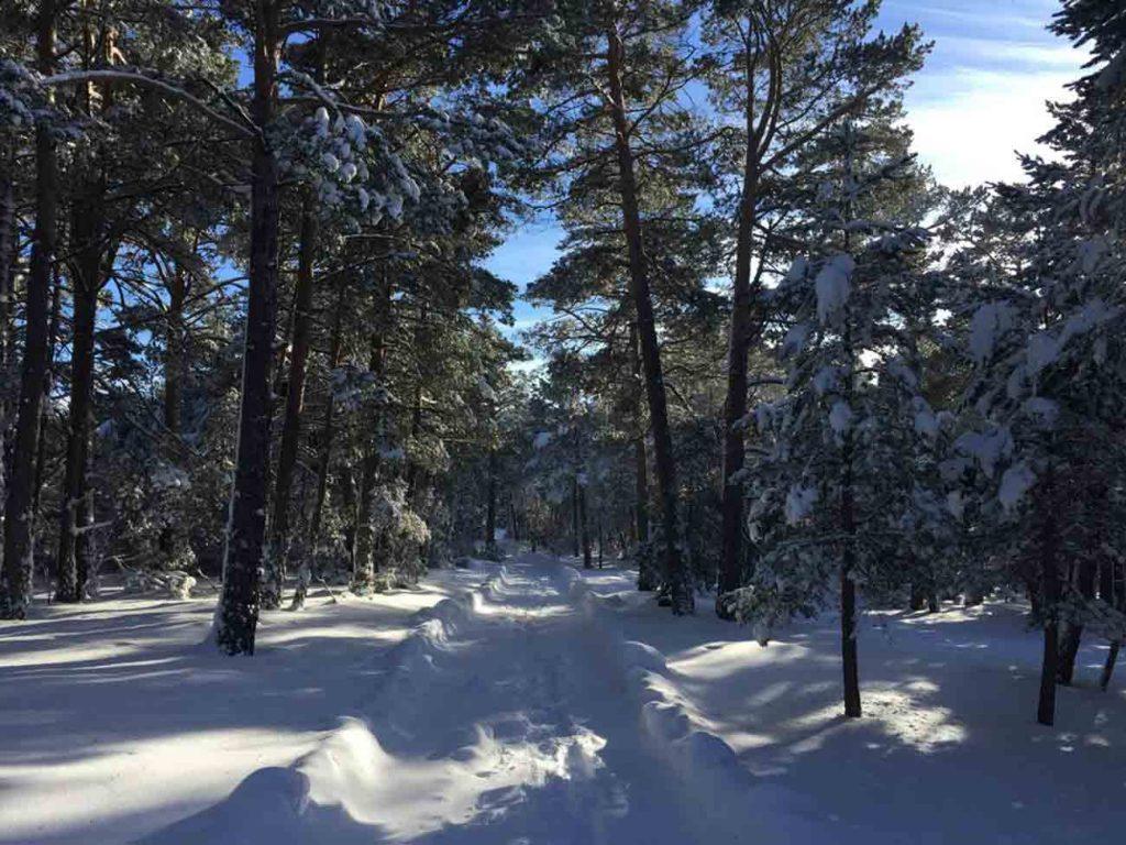 camino-casa-rural-teruel-nevado